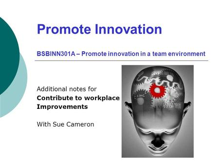 Promote Innovation BSBINN301A – Promote innovation in a team environment Additional notes for Contribute to workplace Improvements With Sue Cameron.