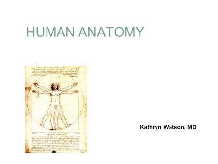 HUMAN ANATOMY Kathryn Watson, MD. Introduction to Anatomy (a) Illustrations in slides: © 2005 Pearson Education Inc., publishing as Benjamin Cummings.