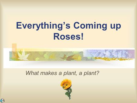 Everything's Coming up Roses! What makes a plant, a plant?