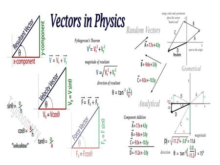PHYSICS Vectors and Scalars.