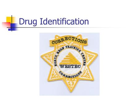 "Drug Identification. Identifying Persons Under the Influence Nothing is a substitute for experience. Always have a ""cover officer"" when conducting an."