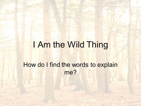 I Am the Wild Thing How do I find the words to explain me?