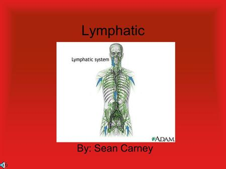 Lymphatic By: Sean Carney Functions Return leaked fluids to blood vessels. Fight off disease. Help absorb fats.2.