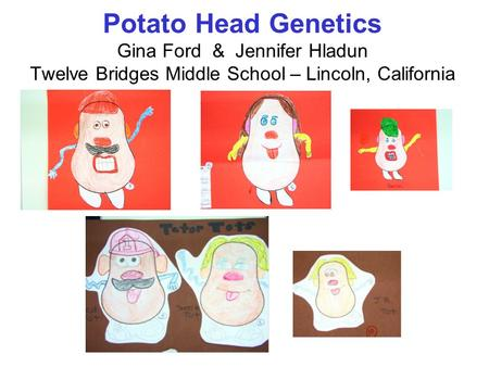 Overview ~Cumulative Assessment Project ~3 Generations of Potato Heads