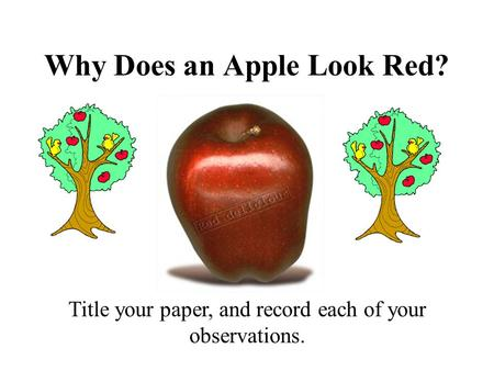 Why Does an Apple Look Red? Title your paper, and record each of your observations.