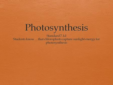 Photosynthesis Standard 7.1d