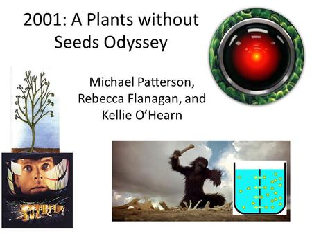 2001: A Plants without Seeds Odyssey Michael Patterson, Rebecca Flanagan, and Kellie O'Hearn.