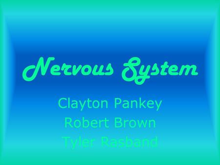 Nervous System Clayton Pankey Robert Brown Tyler Rasband.