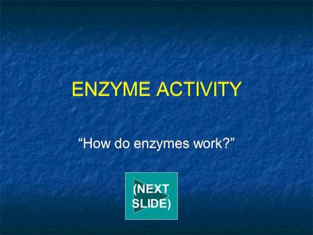 "ENZYME ACTIVITY ""How do enzymes work?"" (NEXT SLIDE)"