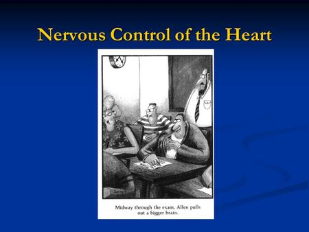Nervous Control of the Heart. Internal Control of Heart Rate The heart or cardiac muscle beats involuntarily. The heart or cardiac muscle beats involuntarily.