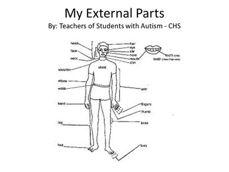 My External Parts By: Teachers of Students with Autism - CHS.