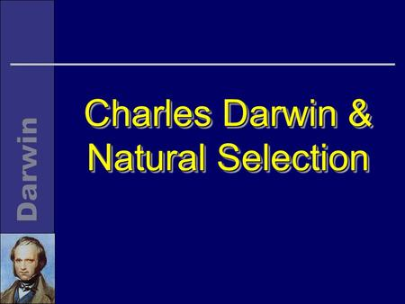 Charles Darwin & Natural Selection. LifelineLifeline n Born 1809 n Study (Edinburgh and Cambridge) 1825-1831 n Voyage of the Beagle 1831-36 n Retired.