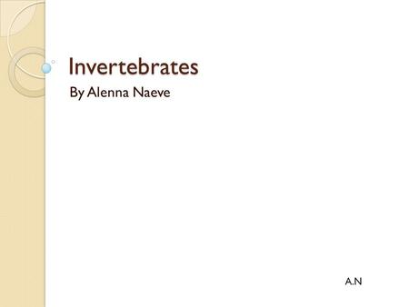 Invertebrates By Alenna Naeve A.N.