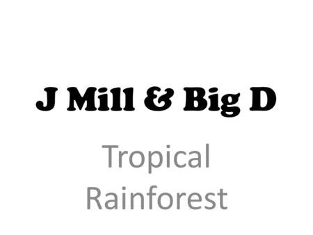 J Mill & Big D Tropical Rainforest. Topical Rainforest Tropical rainforests cover about 6% of the Earth's total land surface. They are mainly located.