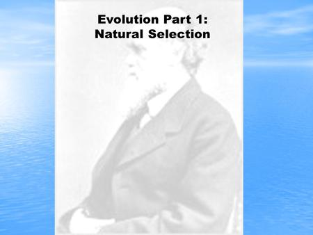 Evolution Part 1: Natural Selection. Charles Darwin 1809-1882 The Father of Evolution The Father of Evolution Born in 1809, England Born in 1809, England.