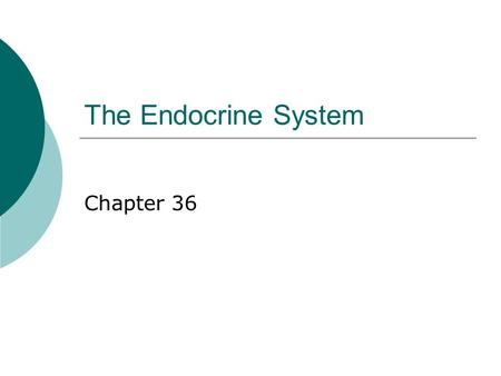 The Endocrine System Chapter 36.