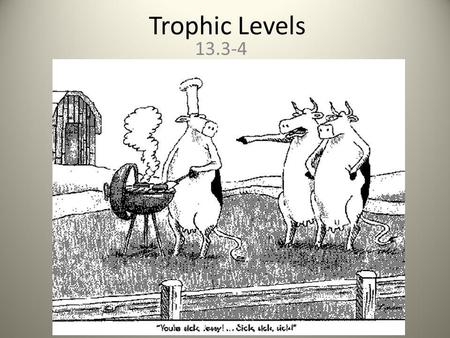 Trophic Levels 13.3-4.