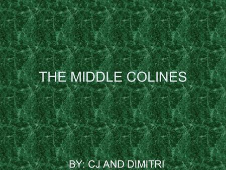 THE MIDDLE COLINES BY: CJ AND DIMITRI NAME OF COLONIES There are all types of settlers Pennsylvania NEW Hampshire DELAWARE There are all types of settlers.