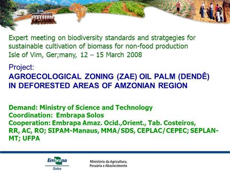 Project: AGROECOLOGICAL ZONING (ZAE) OIL PALM (DENDÊ) IN DEFORESTED AREAS OF AMZONIAN REGION Demand: Ministry of Science and Technology Coordination: Embrapa.
