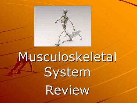 Musculoskeletal System Review. Shock absorbers for the spine Intervertebral disks Bone cells that build new bone Osteoblasts Fluid sac allows for easy.