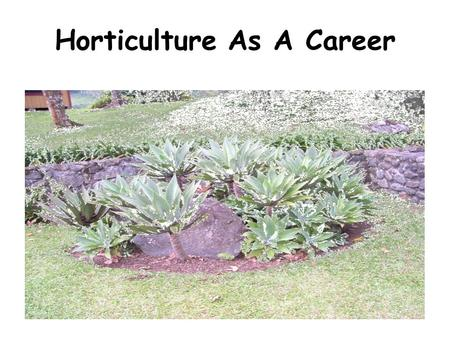 Horticulture As A Career