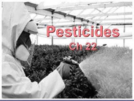 Pesticides Ch 22.  PEST = any organism that interferes in some way with human welfare or activities.  PESTICIDE = toxic chemicals used to reduce the.