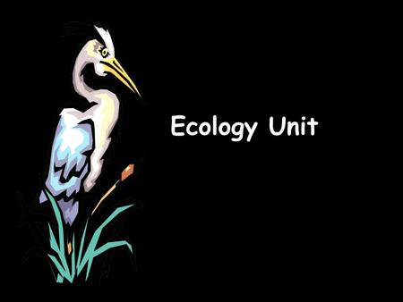 Ecology Unit. What is ecology? Ecology- the scientific study of interactions between organisms and their environments, focusing on energy transfer.