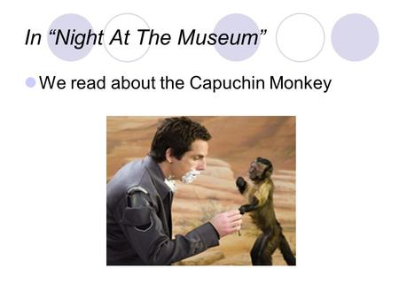 "In ""Night At The Museum"" We read about the Capuchin Monkey."