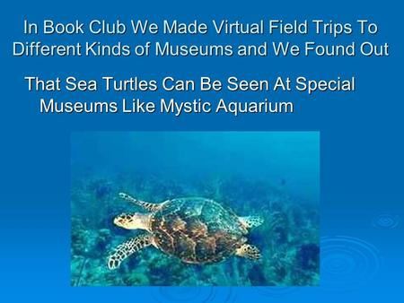 In Book Club We Made Virtual Field Trips To Different Kinds of Museums and We Found Out That Sea Turtles Can Be Seen At Special Museums Like Mystic Aquarium.