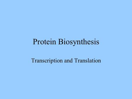 Protein Biosynthesis Transcription and Translation.