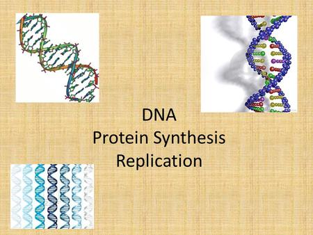 DNA Protein Synthesis Replication. DNA carries a code for proteins.