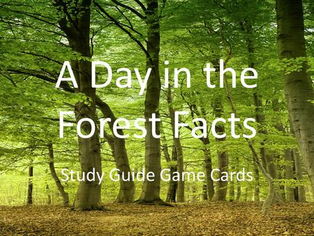A Day in the Forest Facts Study Guide Game Cards.