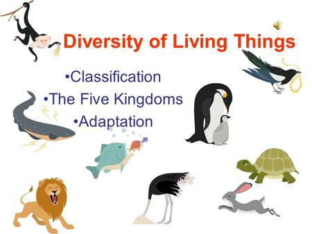 Diversity of Living Things Classification The Five Kingdoms Adaptation.