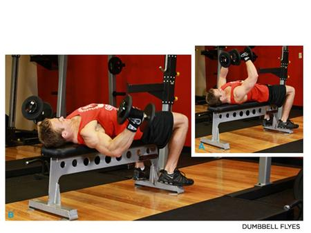 DUMBBELL BENCH PRESS Click Image To Enlarge.