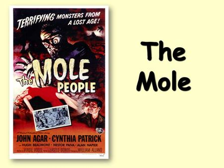 The Mole CA Standards The Mole 1 dozen = 1 gross = 1 ream = 1 mole = 12 144 500 6.02 x 10 23 There are exactly 12 grams of carbon-12 in one mole of.