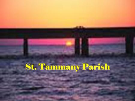 St. Tammany Parish. General Information Established in 1811 One of the Florida Parishes Named in honor of Chief Tammanend, a Delaware chief of the 17.