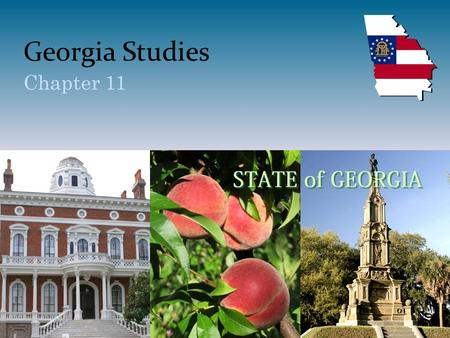 Georgia Studies Chapter 11. Section 1—The Roaring Twenties Vocabulary – Jazz – The blues – Boll weevil – Great Migration.