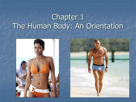 Chapter 1 The Human Body: An Orientation. Anatomy – study of the structure and shape of the body and body parts and their relationship to each other Anatomy.