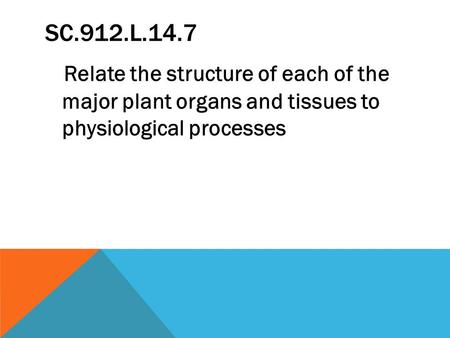 SC.912.L.14.7 Relate the structure of each of the major plant organs and tissues to physiological processes.