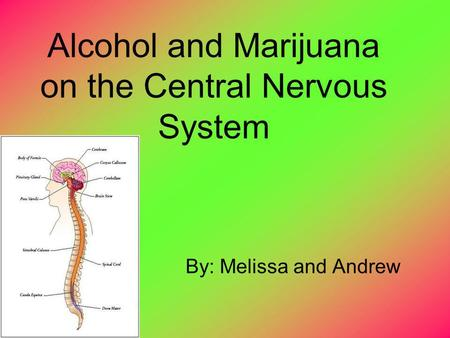 Alcohol and Marijuana on the Central Nervous System