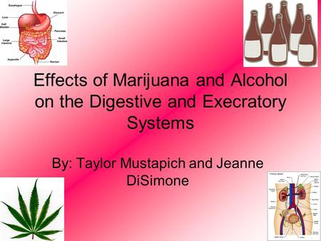 Effects of Marijuana and Alcohol on the Digestive and Execratory Systems By: Taylor Mustapich and Jeanne DiSimone.