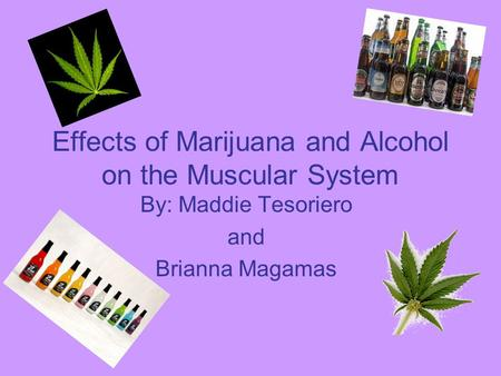 Effects of Marijuana and Alcohol on the Muscular System By: Maddie Tesoriero and Brianna Magamas.