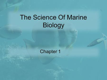 The Science Of Marine Biology Chapter 1. Introduction Marine Biology is the scientific study of the organisms that live in the sea. Some valuable things.