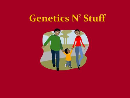 Genetics N' Stuff. Who Came Up with This? Gregor Mendel Proposed theory of heredity –Traits are passed from parents to offspring.