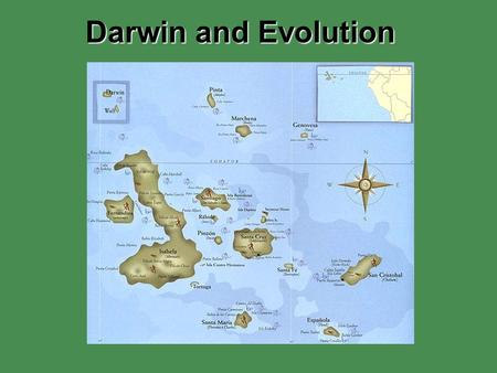 Darwin and Evolution. Darwin's Voyage 1831 Charles Darwin accepted a naturalist position aboard the HMS Beagle. 5-year voyage that provided Darwin with.