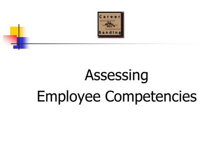Assessing Employee Competencies. 2 What are competencies? Competencies are the observable and measurable set of: knowledge skills abilities that are necessary.