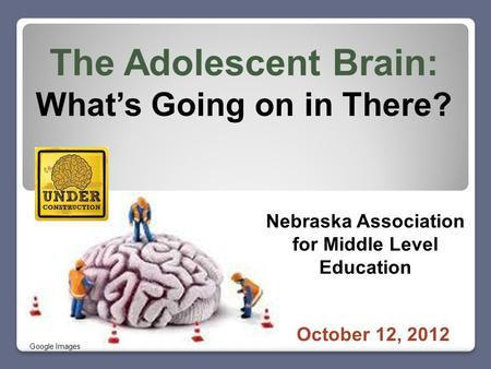 The Adolescent Brain: What's Going on in There? October 12, 2012 Nebraska Association for Middle Level Education Google Images.