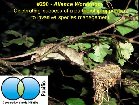 #290 - Aliance Workshop: Celebrating success of a partnership approach to invasive species management.