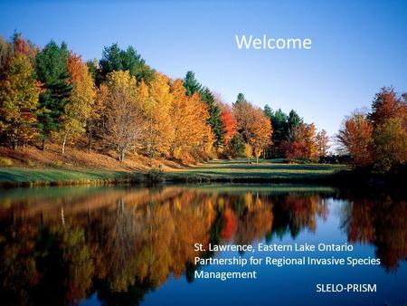 Welcome St. Lawrence, Eastern Lake Ontario Partnership for Regional Invasive Species Management SLELO-PRISM.