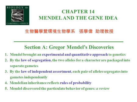 CHAPTER 14 MENDEL AND THE GENE IDEA Section A: Gregor Mendel's Discoveries 1.Mendel brought an experimental and quantitative approach to genetics 2. By.